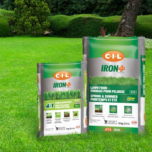 Save 20% Select CIL Fertilizer & Grass Seed