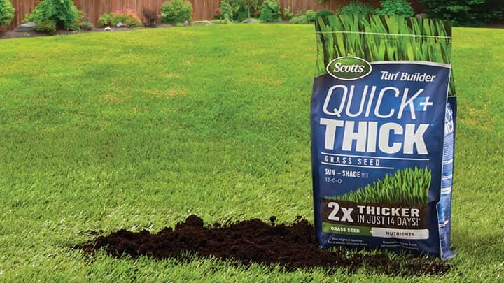 Save 30% Select Scotts Grass Seeds