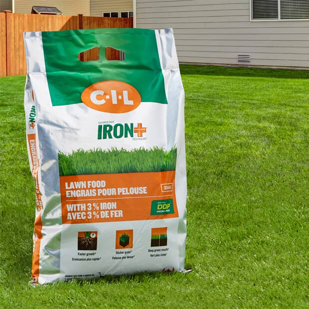 Save up to 20% CIL Iron Plus Lawn Fertilizers