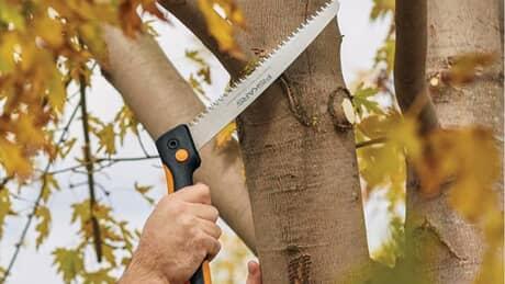 Pruning, Garden & Tree Shears