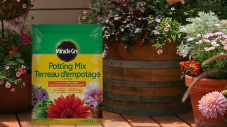 Garden Soils