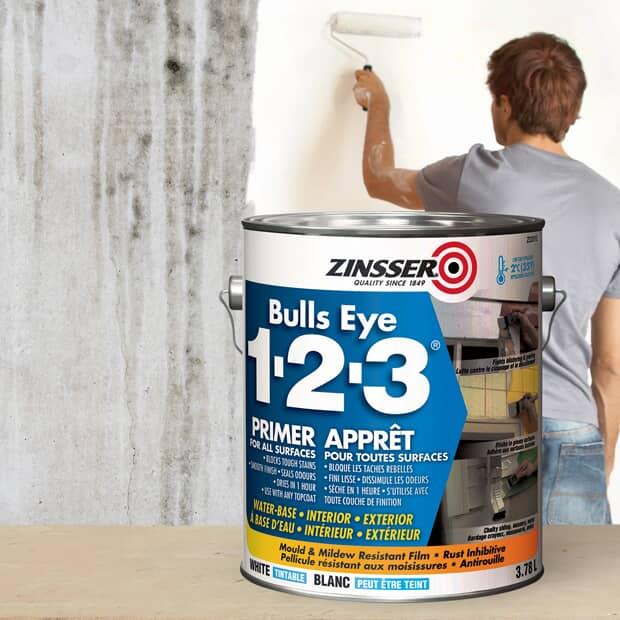 Zinsser Bulls Eye Primer-Sealer