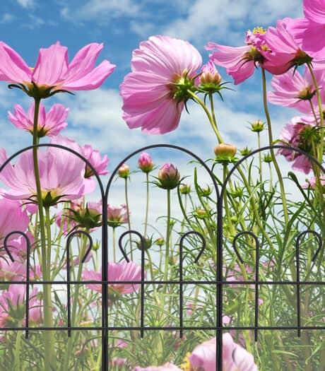 Garden Edging & Fences