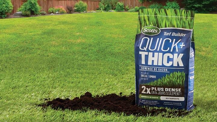 Économisez 30 %  Semences de pelouse Scotts sélectionnées