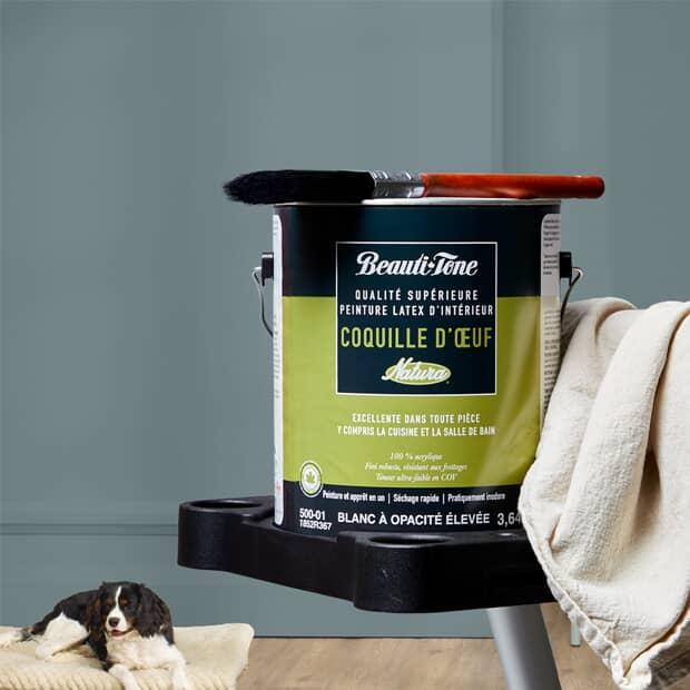 Économisez 30 % Peinture d'intérieur Beauti-Tone Natura 3,4 l – 3,7 l