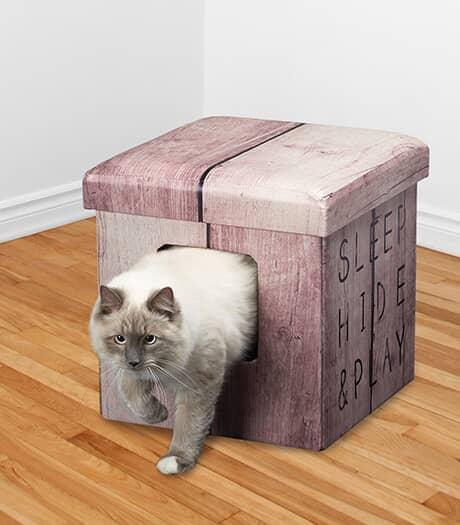 Pouf Dream and Dare avec aire de jeu, de sommeil et de cachette pour chat