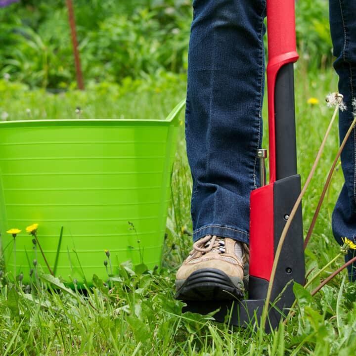 Outils pour la pelouse