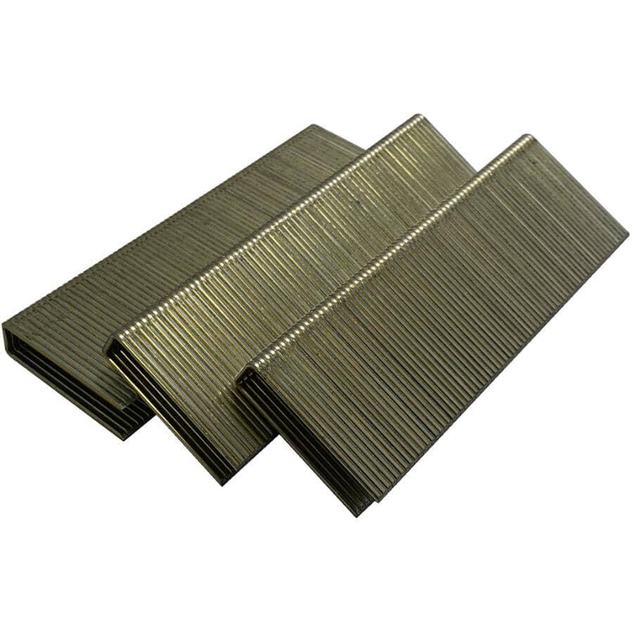 CRISP-AIR:Paquet de 1 000 agrafes à plancher de calibre 15,5, 1-3/4 po