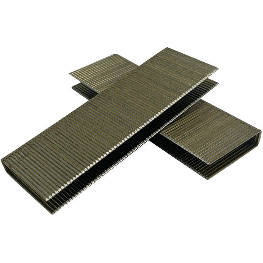 CRISP-AIR:Paquet de 1 000 agrafes à plancher de calibre 15,5, 2 po