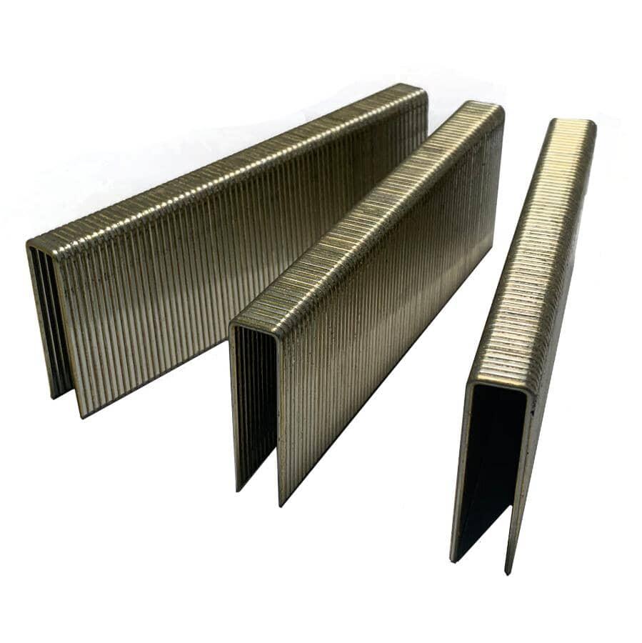 CRISP-AIR:Paquet de 10 000 agrafes galvanisées de calibre 16 à couronne moyenne, 1-1/2 po, pour Paslode