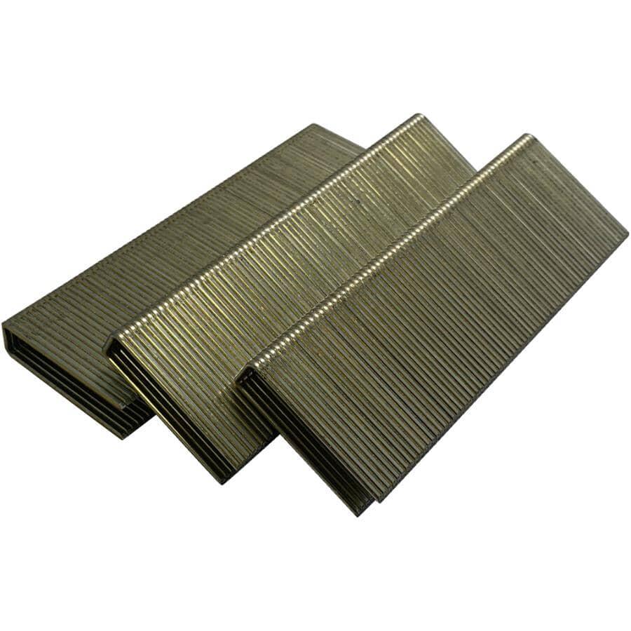 CRISP-AIR:Paquet de 10 000 agrafes galvanisées de calibre 16 à couronne moyenne Senco, 1-3/4 po