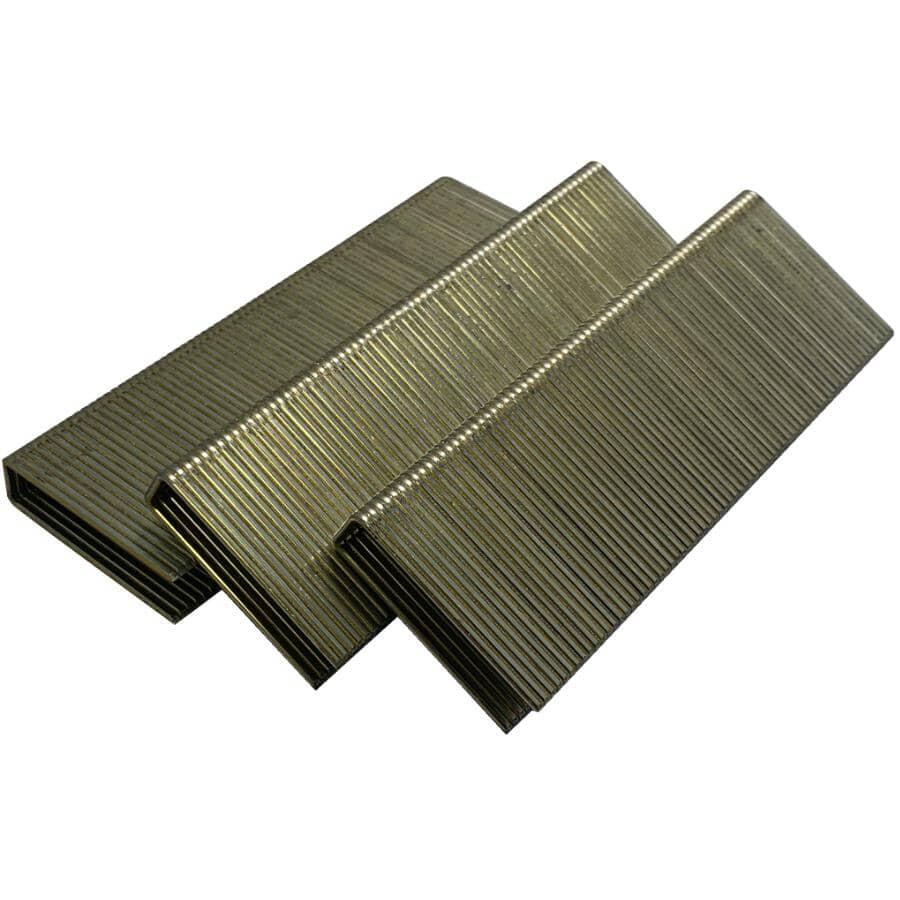CRISP-AIR:Paquet de 10 000 agrafes galvanisées de calibre 16 à couronne moyenne Senco, 2 po
