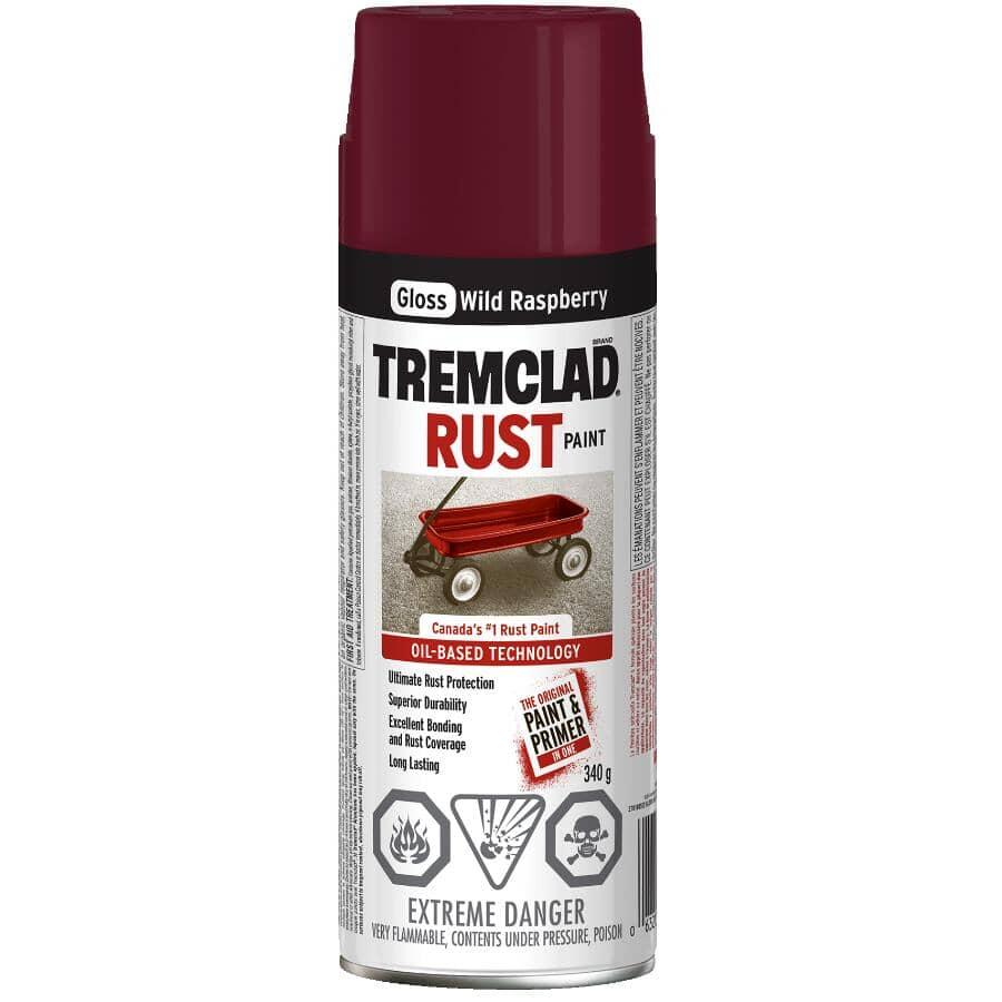 TREMCLAD:Rust Spray Paint - Gloss Wild Raspberry, 340 g