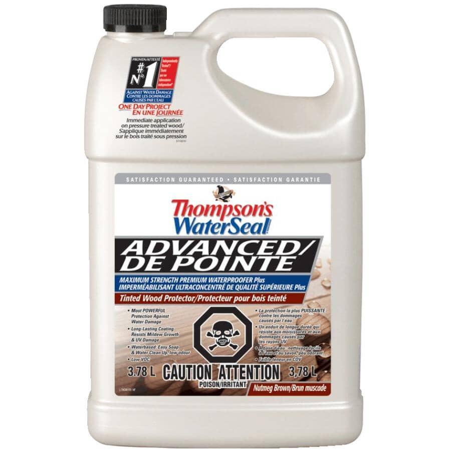 THOMPSON'S WATERSEAL:Advanced Premium Waterproofer Sealant - Nutmeg Brown, 3.78 L