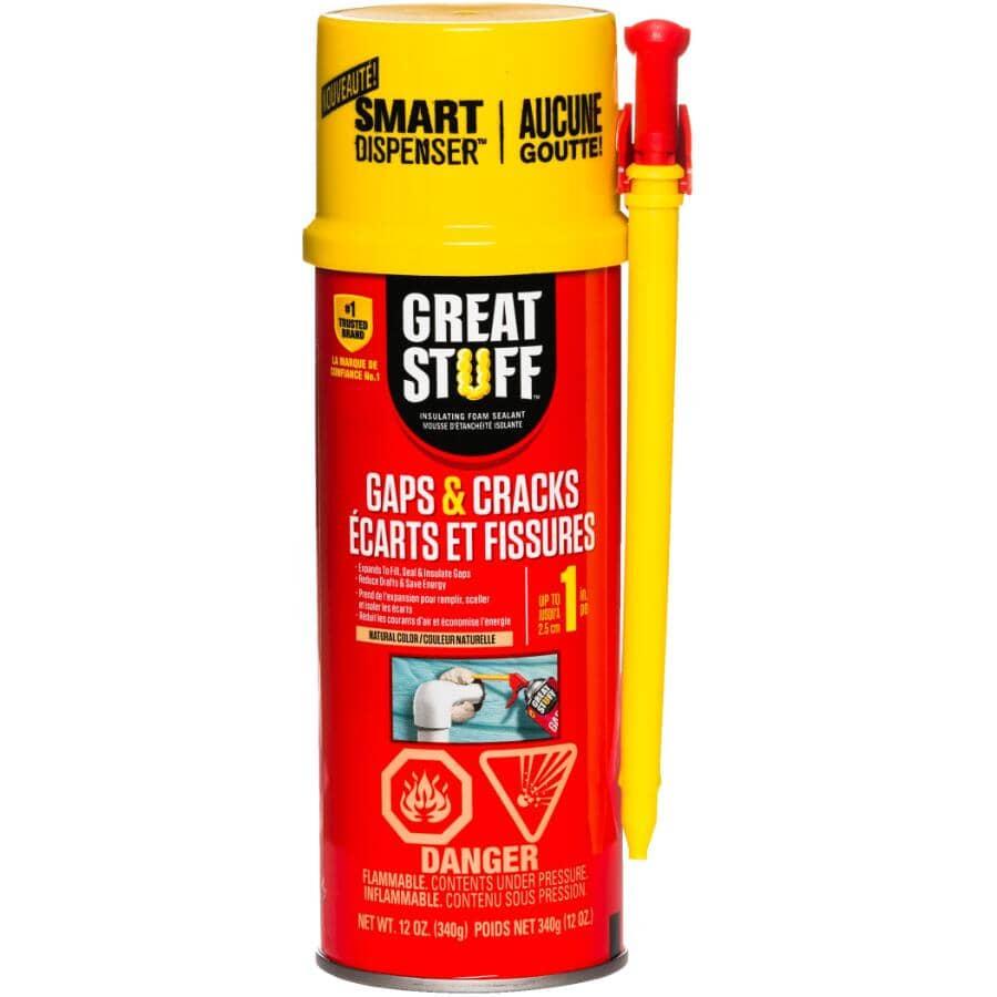 GREAT STUFF:Scellant en mousse isolante pour fissures et cavités, 340 g