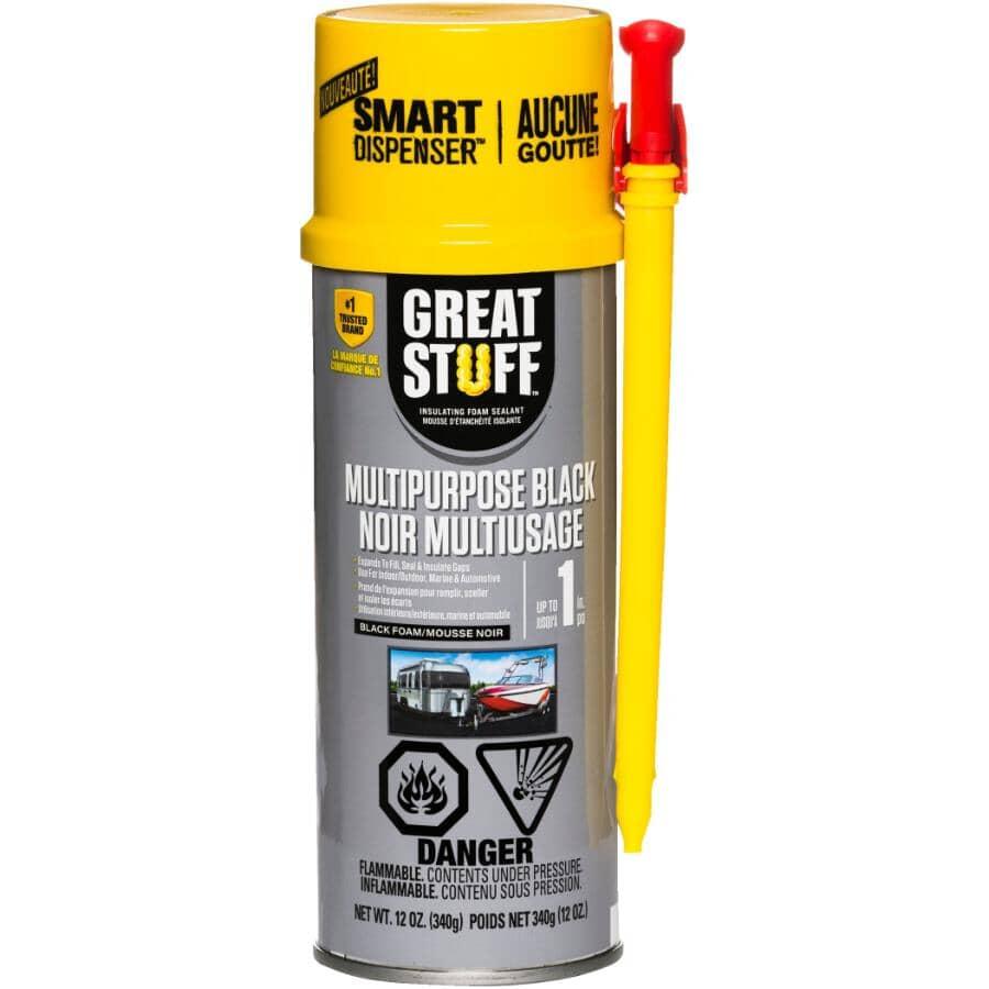 GREAT STUFF:Scellant en mousse isolante tout usage, noir, 340 g