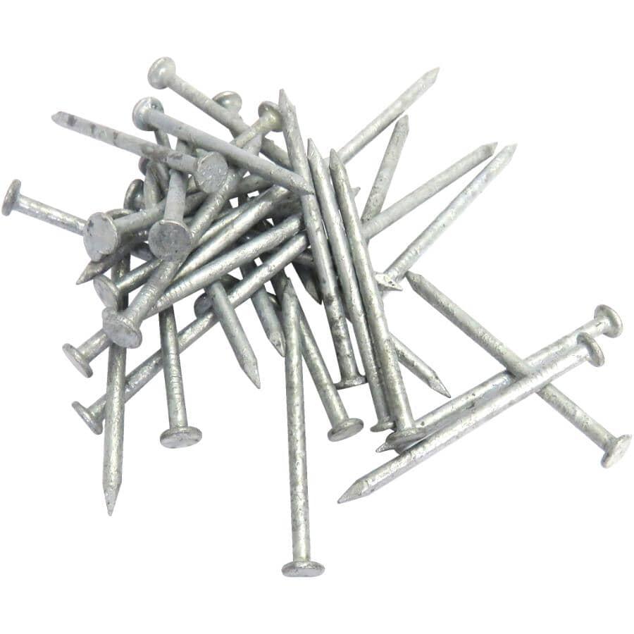 "TREE ISLAND:200 Pack 1-1/2"" Hot Galvanized Common Nails"