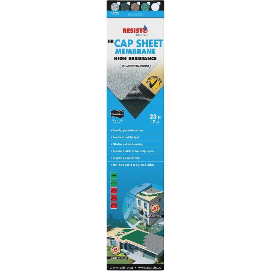 RESISTO:Rouleau de toiture HR pour finition de 39 po x 23 pi, noir
