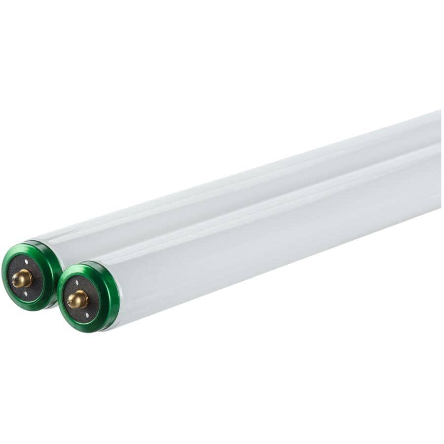 "PHILIPS:75W T12 Single Pin Daylight Fluorescent Light Bulb - 96"", 2 Pack"