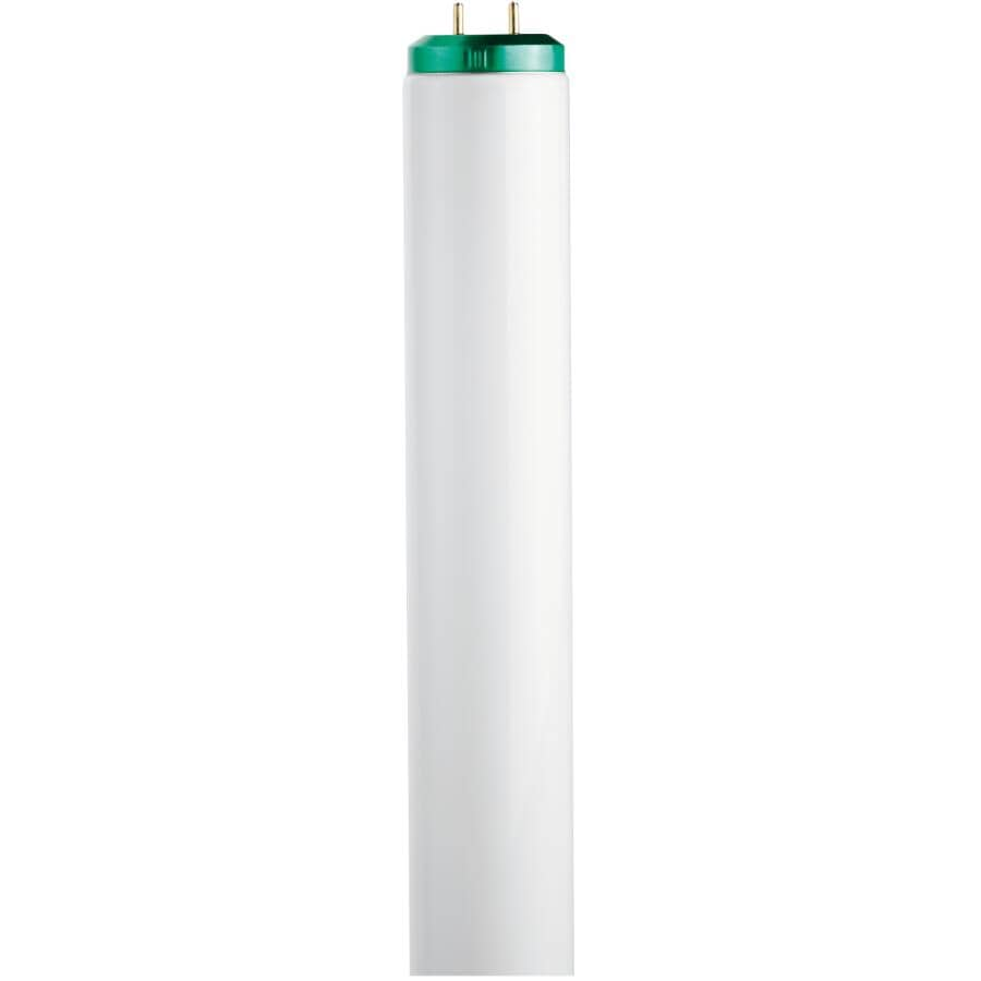 "PHILIPS:20W T12 Bi-Pin Natural White Fluorescent Light Bulb - 24"""