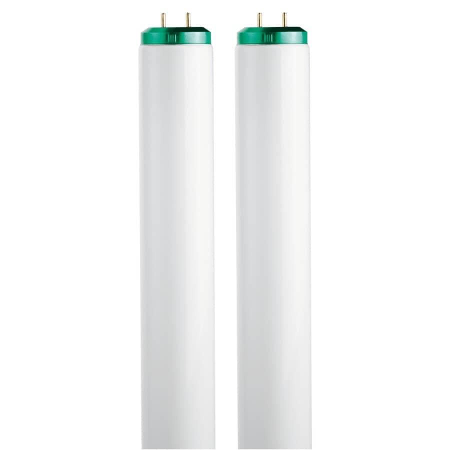 "PHILIPS:20W T12 Bi-Pin Daylight Fluorescent Light Bulbs - 24"", 2 Pack"