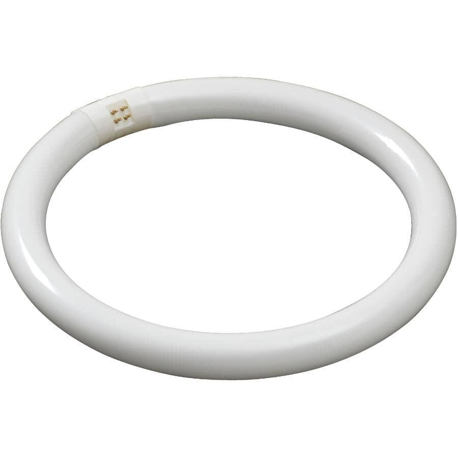 "PHILIPS:32W T9 4 Pin Circline Soft White Fluorescent Light Bulb - 12"""