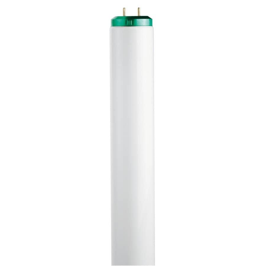 "PHILIPS:30W T12 Bi-Pin Soft White Fluorescent Light Bulb - 36"""