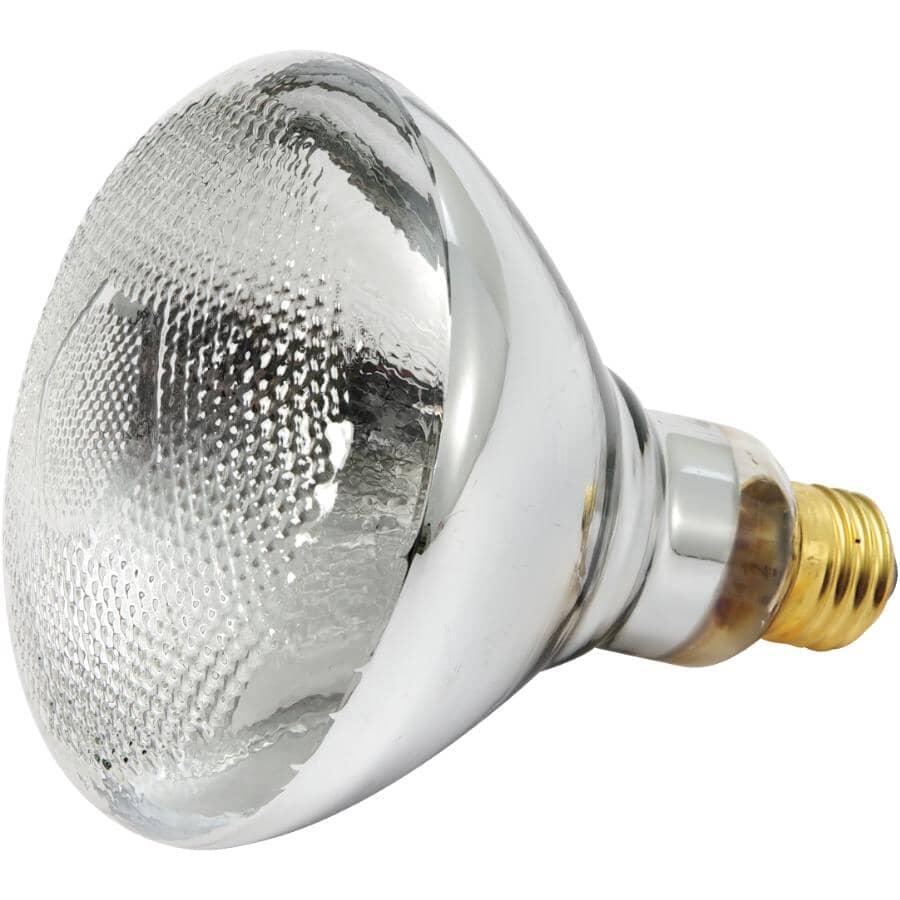 REACTOR:100W PAR38 Medium Base Clear Indoor/Outdoor Flood Light Bulb