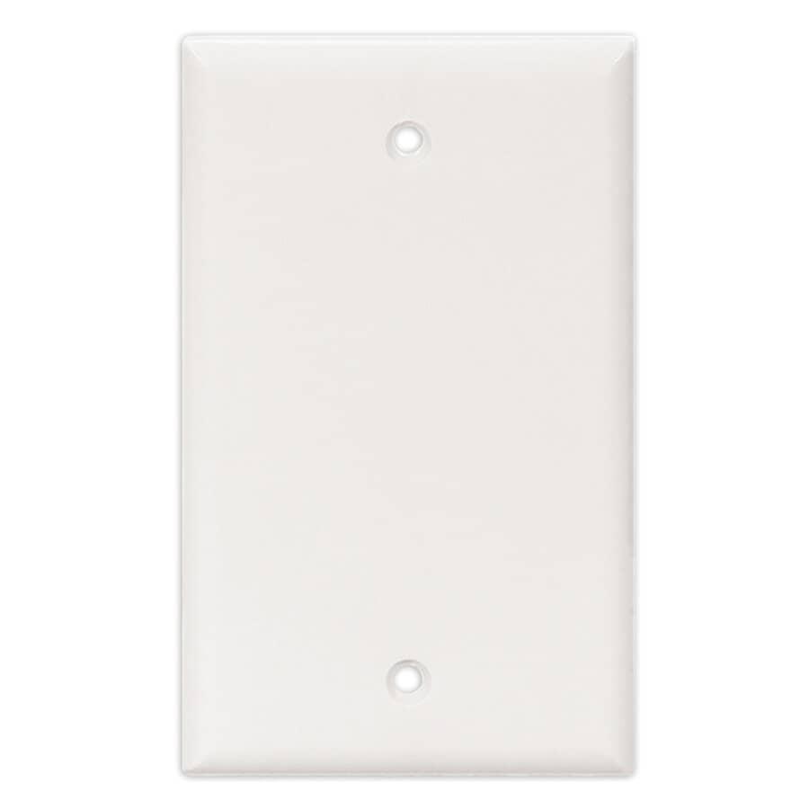 EATON:White 1-Gang Blank Wall Cover
