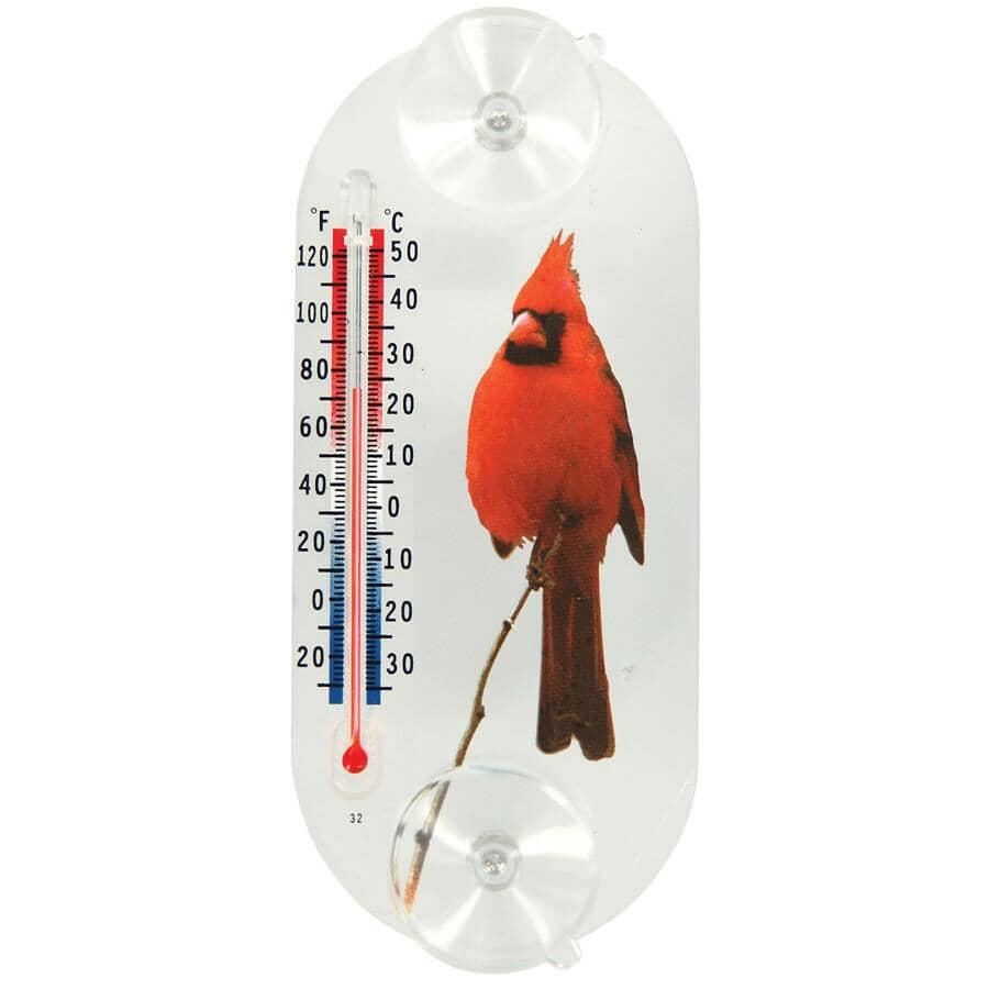 HOMEWARES:Thermomètre de fenêtre à ventouse, à motif de cardinal rouge