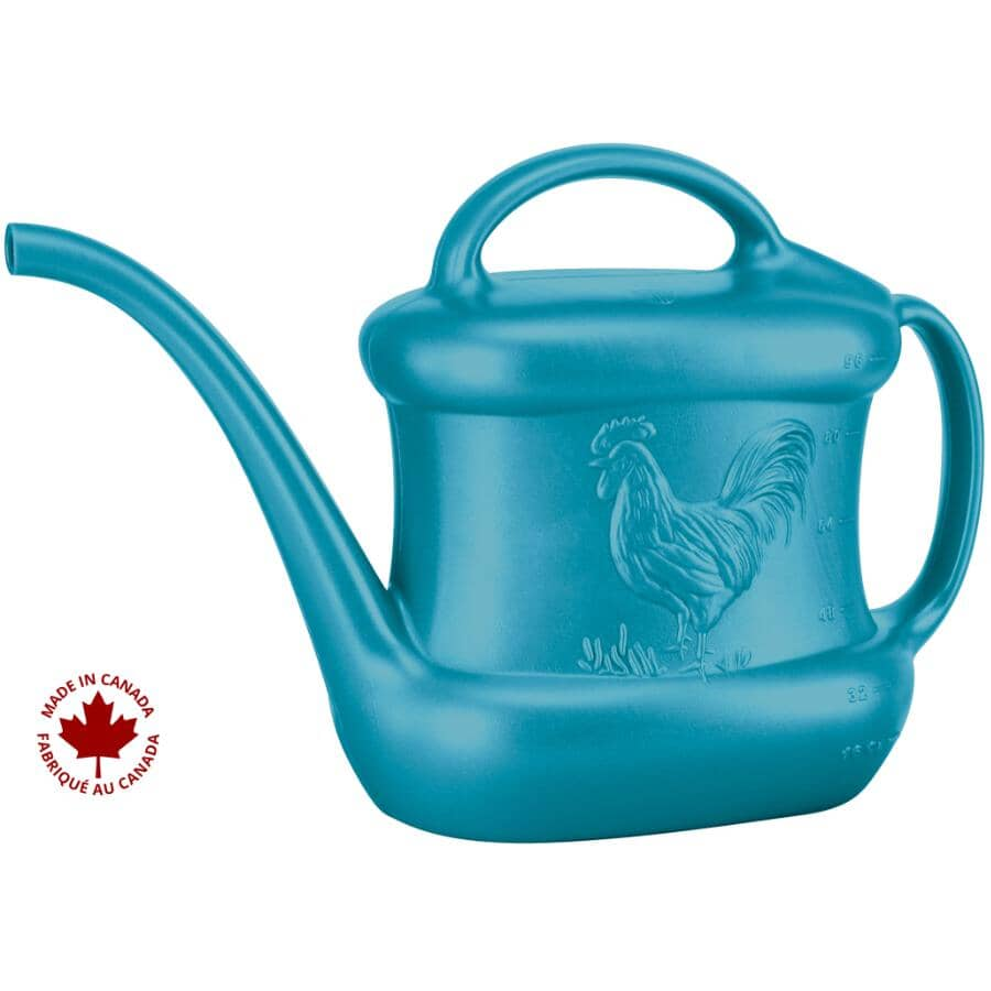 DCN:3L Blue Plastic Watering Can