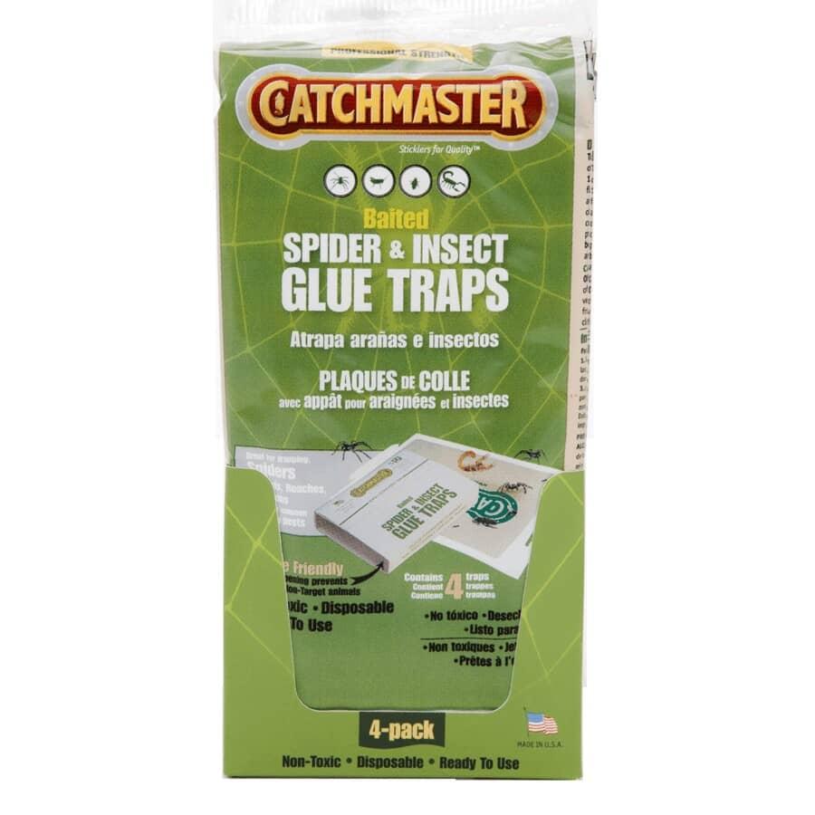 CATCHMASTER:Paquet de 4 pièges encollés pour insectes et araignées, non-toxique