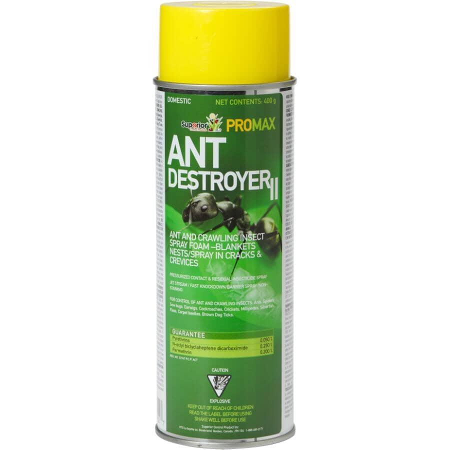 PROMAX:Foam Ant Destroyer - 400 g