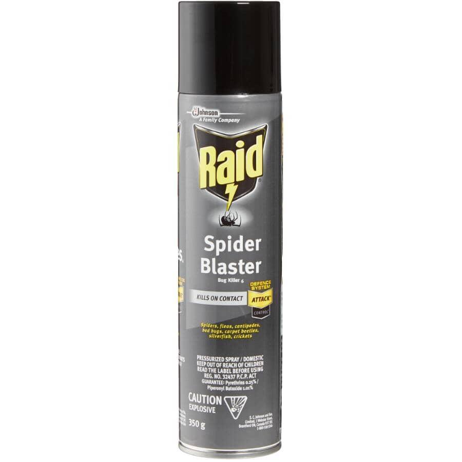 RAID:Spider & Insect Killer Spray - 350 g