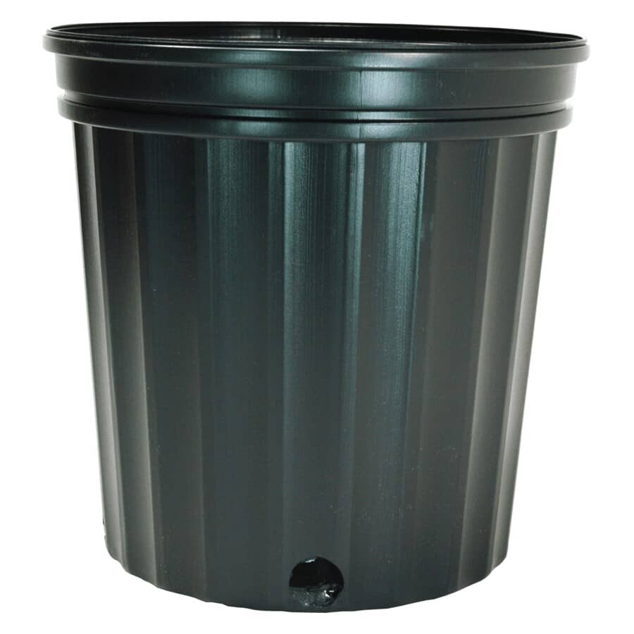 "PLANTERS PRIDE:8.5"" Black Plastic Planter"