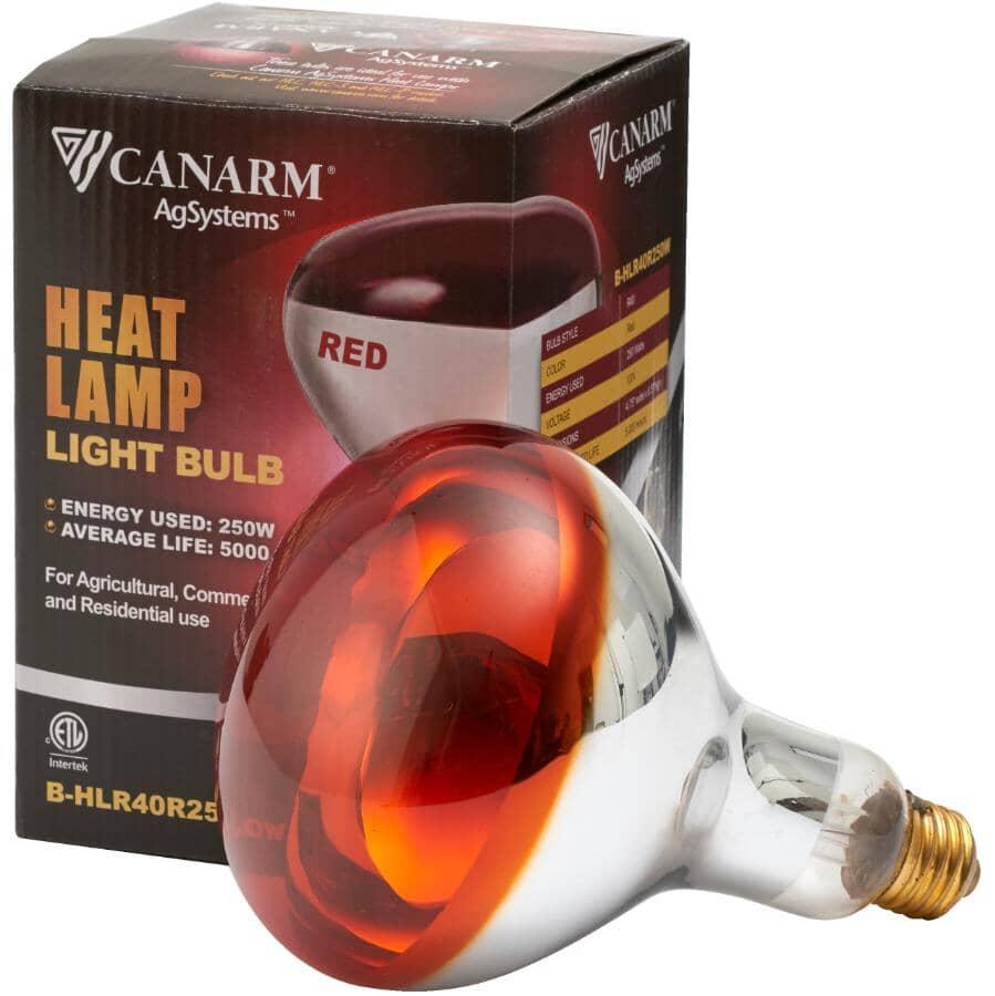 CANARM:250 Watt Red Soft Glass Brooder Lamp