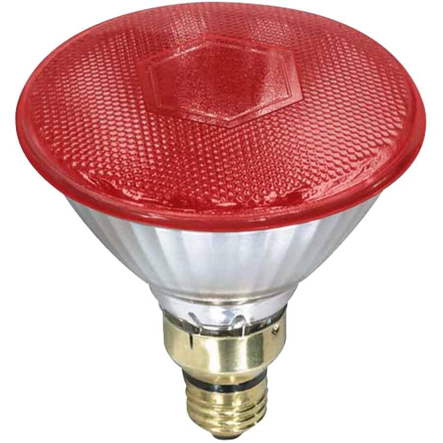 CANARM:100 Watt Red Hard Glass Brooder Lamp