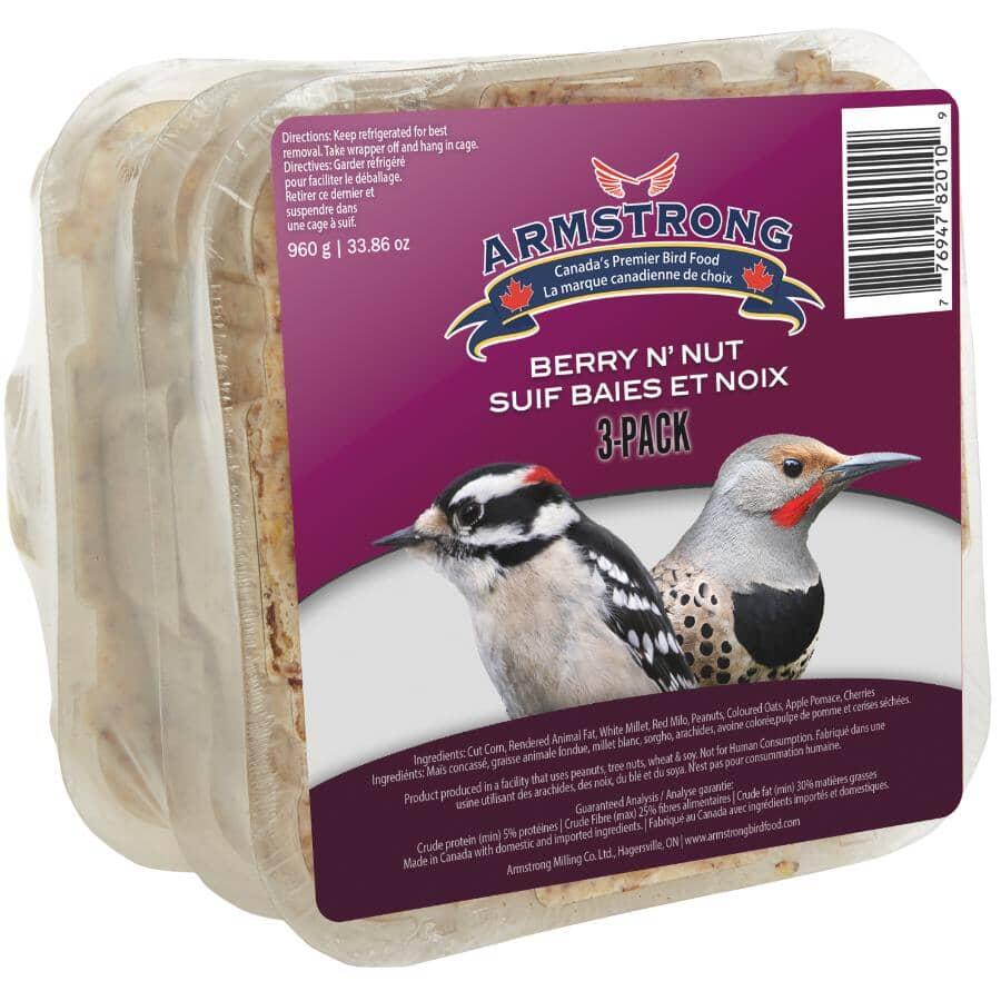 SURVIVAL:Paquet de 3 pains de suif, fruits et noix pour oiseaux, 312 g