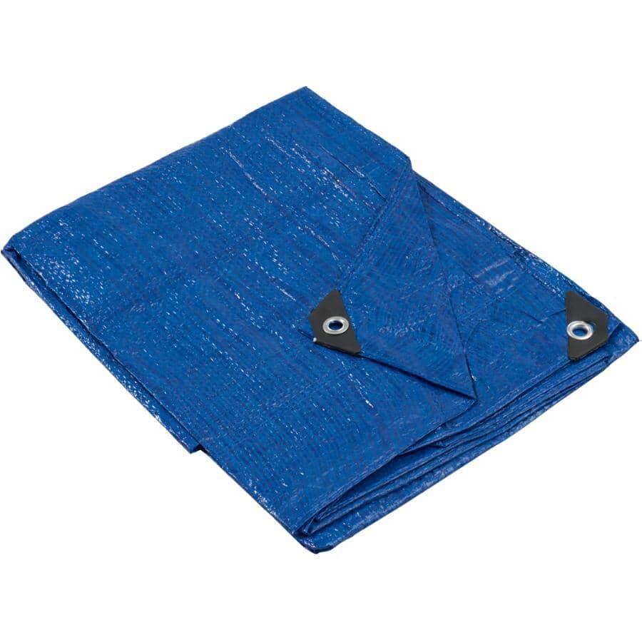 GENERIC:6' x 8' Light Duty Blue Poly Tarp